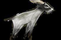 Sene-Goat/Pike-Goat (~2022, Reston) [Enemies Endure]